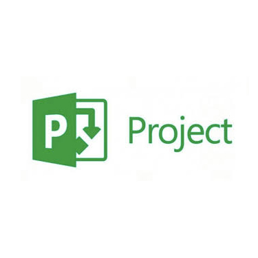 Microsoft Project 2019 Pro Medialess PKC